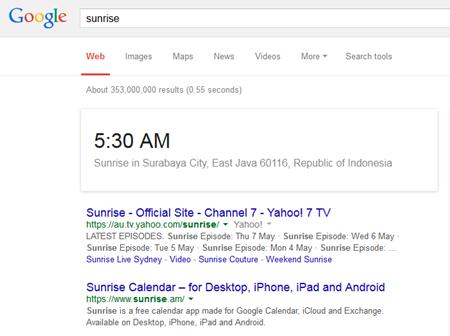 fungsi google
