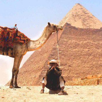 camel-926435_1920