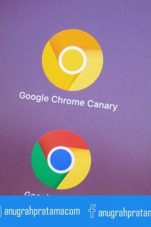 software google chrome